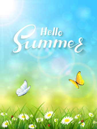 summer sky: Sunny summer day and blue sky background with lettering Hello Summer, butterflies flying above the grass and flowers, illustration.