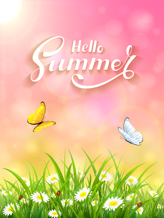 ladybird: Sunny day and lettering Hello Summer on pink background, butterflies flying above the grass and flowers, illustration.
