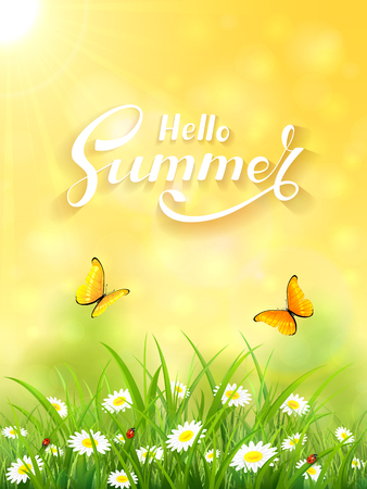 Sunny day and lettering Hello Summer on yellow background, butterflies flying above the grass and flowers, illustration. Illustration
