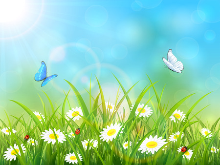 Sunny blue sky background. Butterflies flying above the grass and flowers, illustration.