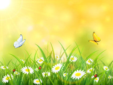 Sunny yellow background. Butterflies flying above the grass and flowers, illustration.