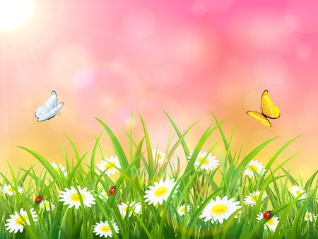 springtime background: Sunny pink background. Butterflies flying above the grass and flowers, illustration. Illustration