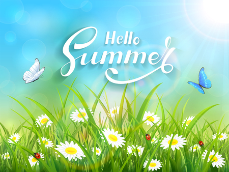 summer sky: Sunny blue sky background with lettering Hello Summer. Butterflies flying above the grass and flowers, illustration.