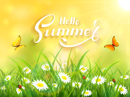 ray of light: Sunny yellow background with lettering Hello Summer. Butterflies flying above the grass and flowers, illustration.