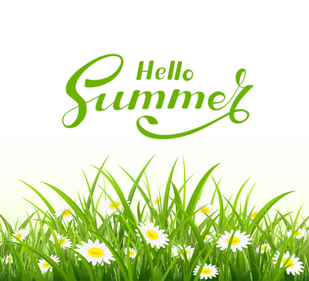 text field: Lettering Hello Summer with grass and flowers on white background, illustration.