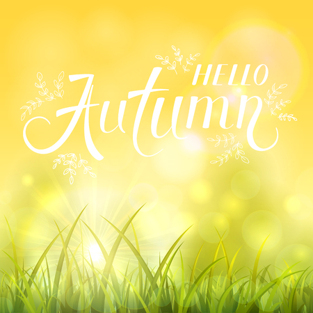 Autumn background with shinning sun and grass. Sunny day with white lettering Autumn, illustration.