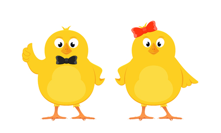 Two funny yellow chickens with bow isolated on white background, illustration. Çizim