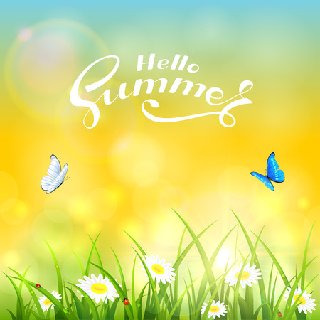 Grass with flowers and text Hello Summer on the yellow background of a shining sun, illustration.