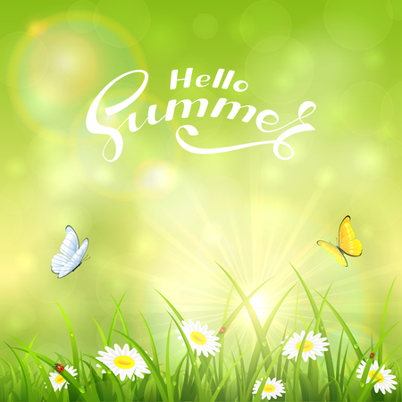 Grass with flowers and text Hello Summer on the green background of a shining sun, illustration.
