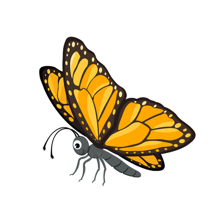 Happy butterfly isolated on white background, illustration.