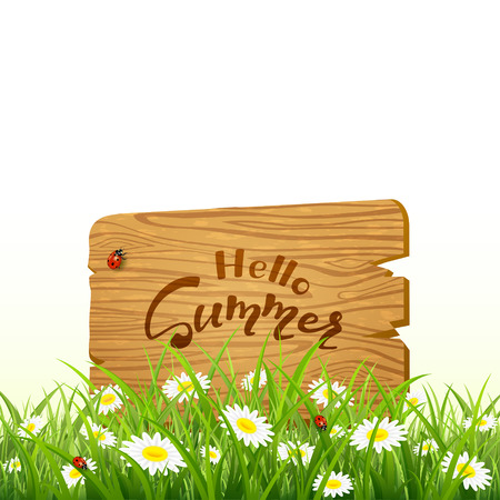 Nature background. Lettering Hello Summer on wooden board in grass with flowers, illustration.