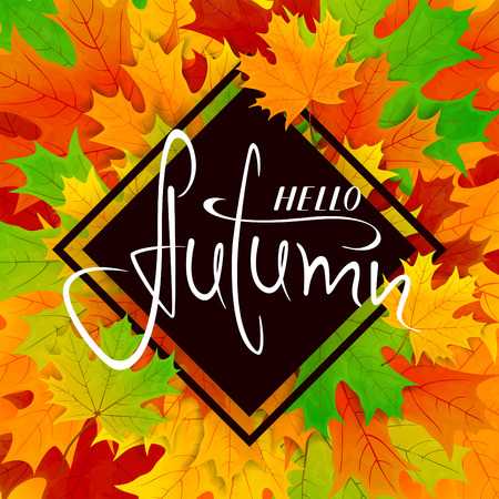Colorful background. Maple leaves and lettering Hello Autumn on black banner, illustration. Illustration