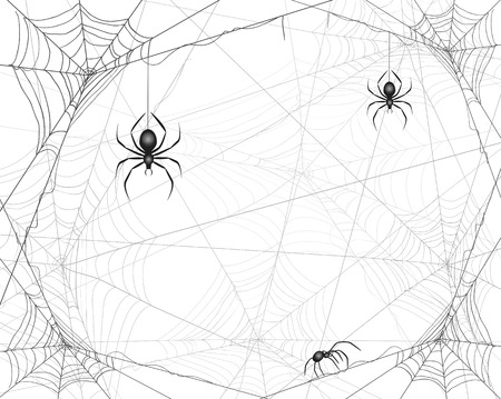 Halloween background with spiders and cobwebs, illustration.