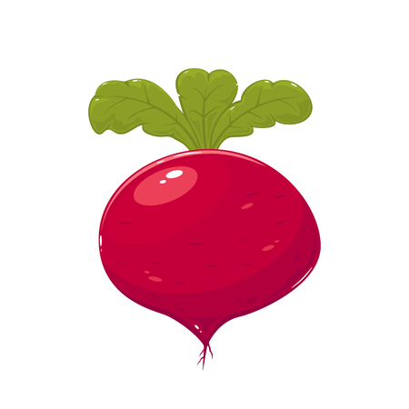 Delicious ripe beet isolated on white background, illustration. Illusztráció