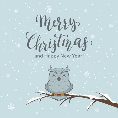 Lettering Merry Christmas on winter background with owl on branch and snow, illustration. Stock Illustratie