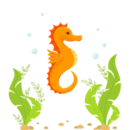 Orange seahorse and green algae under water, illustration.