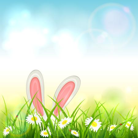 Tema de Pascua con orejas de conejo. Fondo de naturaleza azul con conejo blanco en pasto con flores, ilustración. Ilustración de vector