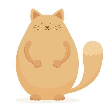 Cute fat cat isolated on white background. Happy domestic animal. Illustration with Funny pet can be used for holiday design, cards, children's clothing or things design, banners, animal shop.