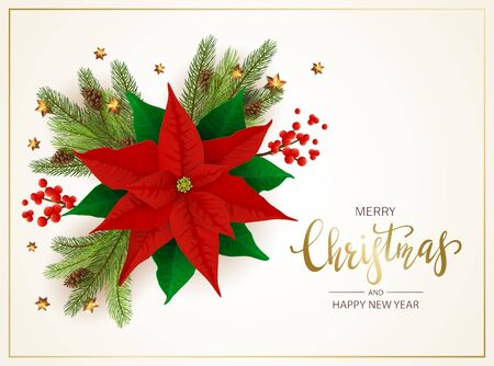 Christmas decorations with flower red poinsettia, holly berries and Christmas tree branches on white background. Illustration can be used for holiday design, cards, invitations, postcards and banners. Ilustração