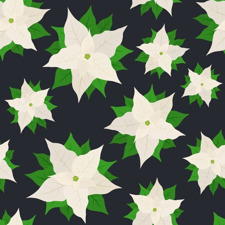Seamless pattern with white poinsettia on black background. Illustration with Christmas flower can be used for backdrops, wrapper, wallpaper, holiday cards, childrens clothing or things design.
