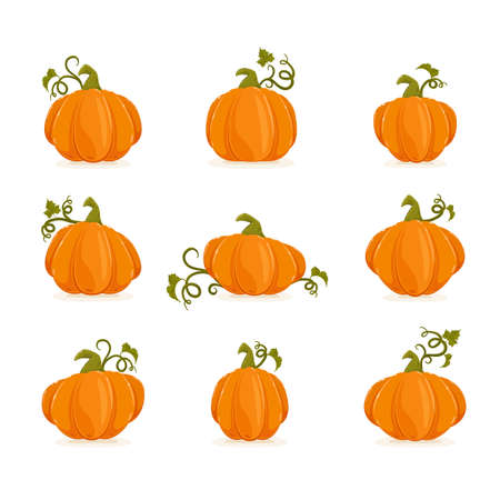Set of ripe pumpkins isolated on white background. Cartoon elements for holiday design. Icons for Halloween or Thanksgiving Day. Illustration can be used for holiday backgrounds, cards, banners.