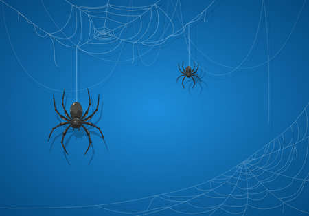 Big black spider on blue Halloween background. Banner with scary black spiders on cobwebs. Illustration can be used for holiday cards, backdrops, children's design, invitations and banners.