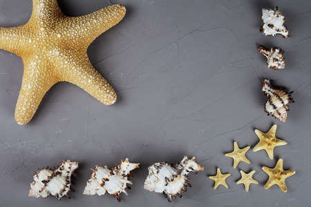 Summer sea background with seafood and starfish, top view, copy space