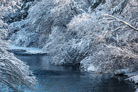 river isar in winter snow