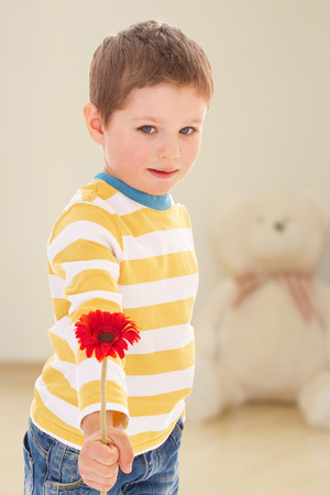 little boy offers to admire the beautiful red flower. photo