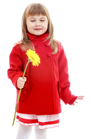 minx: Charming little girl in a red coat with a yellow flower in her hand.Happy childhood, fashion, autumnal mood concept. Isolated on white background Stock Photo