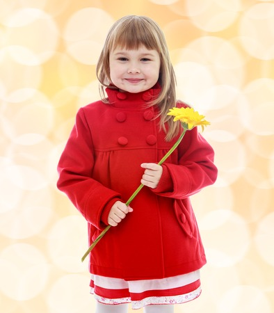 Very cute little girl with yellow flower in her hand.Happiness, winter holidays, new year, and childhood. Stock Photo