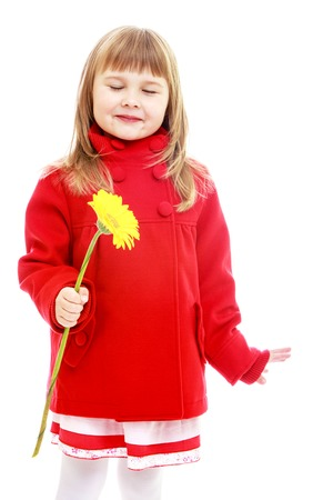 Little girl holding a yellow flower. Happy childhood, fashion, autumnal mood concept. Isolated on white background
