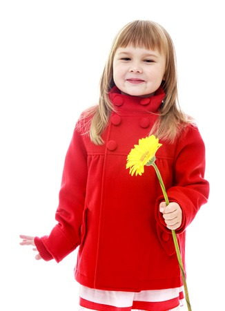 minx: Adorable little girl in red coat with yellow flower in her hand.Happy childhood, fashion, autumnal mood concept. Isolated on white background