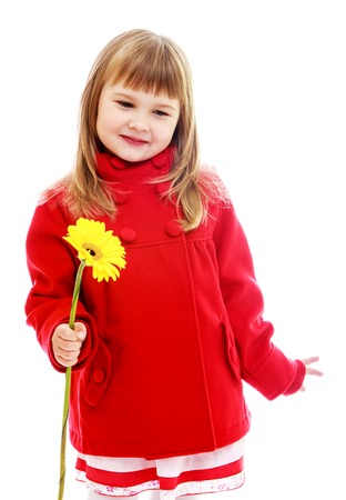 Adorable little girl in red coat with yellow flower in her hand.Happy childhood, fashion, autumnal mood concept. Isolated on white background photo