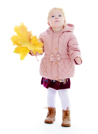 baby 4 5 years: Adorable little girl holding a bouquet of maple leaves.Isolated on white background portrait. Stock Photo