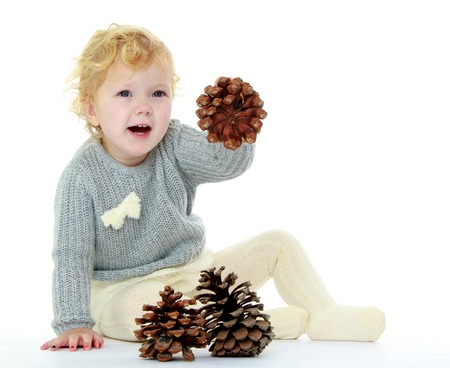 pine three: Pretty little blonde girl in a knitted dress sitting on the floor and plays with large pine cones , she learns to count to three in Montessori kindergarten-Isolated on white Stock Photo