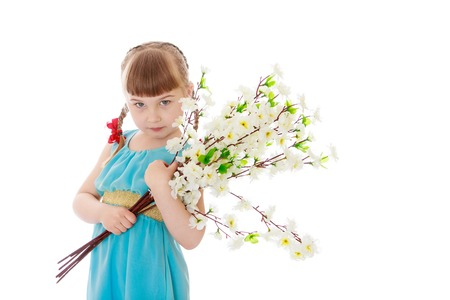 beautiful bangs: Beautiful little blonde girl with short bangs and braids in a long blue dress holding a bouquet of white flowers, close-up-Isolated on white background