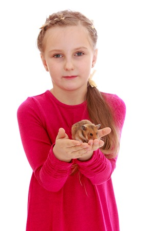 girl dress: Cute little girl in red long dress holds in front of himself on the palms of his beloved pet hamster-isolated on white background Stock Photo
