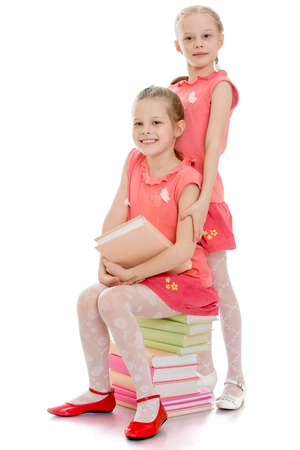 Two adorable sisters are sitting on the books. The girls are dressed in pink t-shirts with short sleeve and short pink skirt-Isolated on white background Standard-Bild