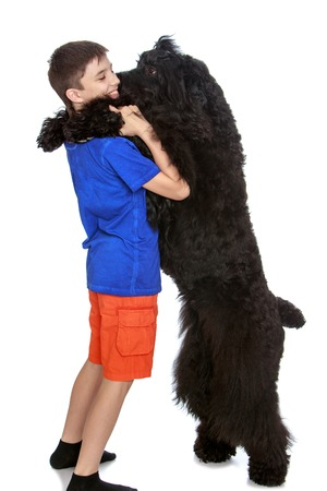Large black shaggy dog put paws on the shoulders of its owner-Isolated on white background Stock Photo
