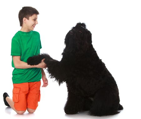 Cheerful teen boy holding the paw of a black dog - Isolated on white background Stock Photo