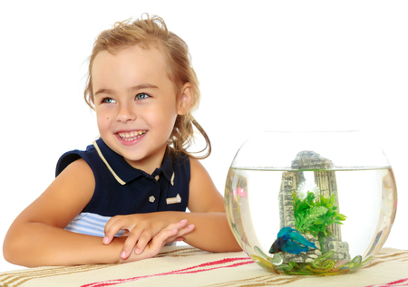 The little girl looks at the fish that swim in the aquarium.