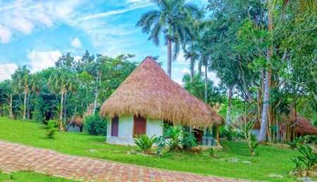Gazebo in the park with thatched roof. Stockfoto
