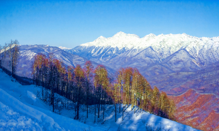 Beautiful view of the mountain peaks on a sunny day. Sochi, Russ