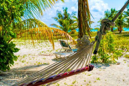 Leere Hängematte zwischen Palmen am Sandstrand
