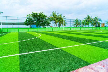 Soccer field, artificial green grass, among a palm forest.