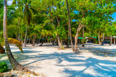 Shadows of palm trees on the sandy seashore of tropical paradise Imagens