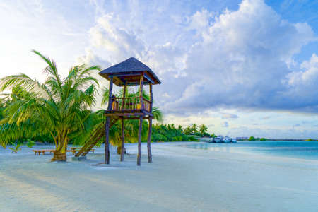 Beach Resort with Palm Trees and Wooden Empty Lifeguard Tower