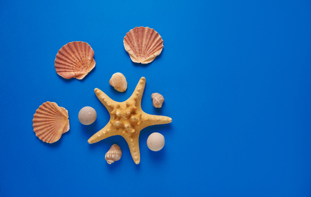 Summer sea background - shells, star fish on a blue background. Flat lay. Top view. 写真素材