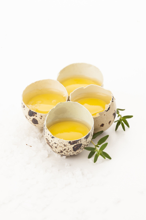 Raw quail eggs with yolk and herbs on white background 写真素材